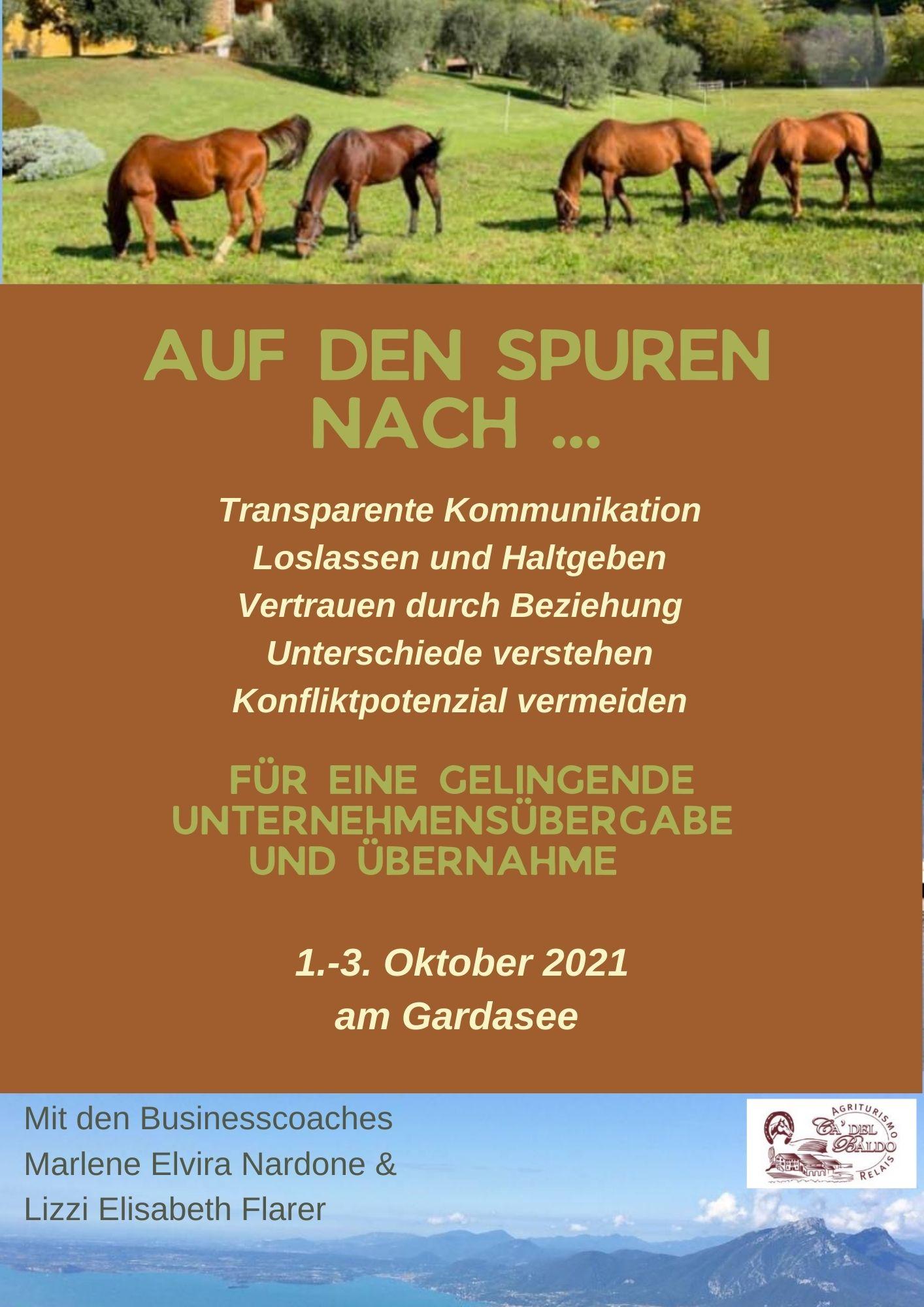 unternehmensnachfolge-gardasee-seminar-lizziflarer